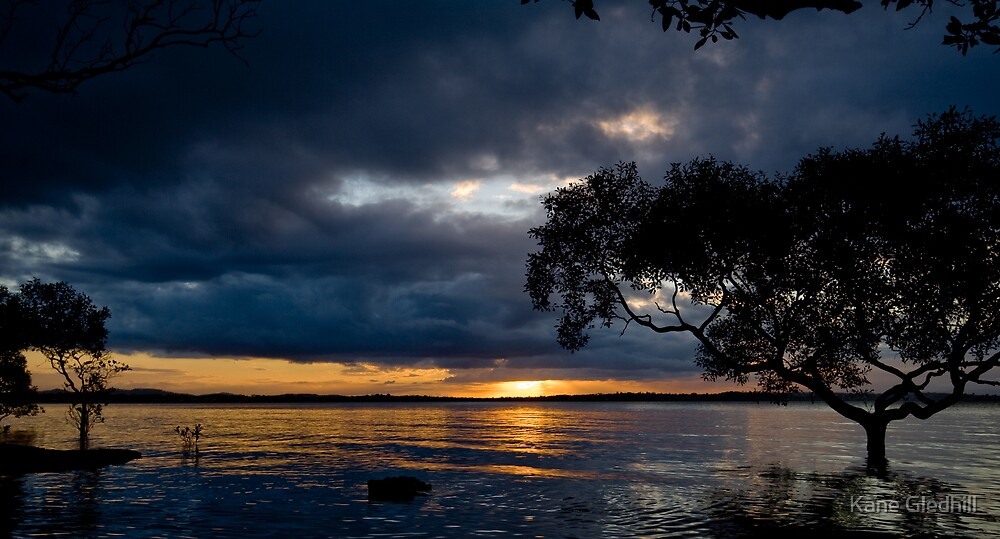 Sunset with the Mangroves by Kane Gledhill
