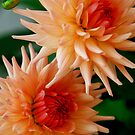 """Mars Attack     Part 10   """"They came from Space"""" by Flowers"""