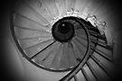 311 Steps by Steven Guy
