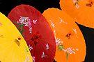 Umbrellas  by photosbyflood