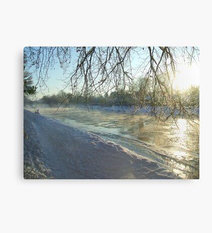 icy tweed Canvas Print