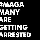 MAGA: Many Are Getting Arrested by seanlockephoto