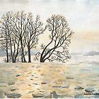 Frozen River by CarolineLembke