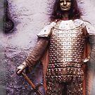 Knight in ... by malcblue
