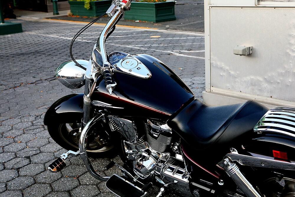 Ride ? by pmarella