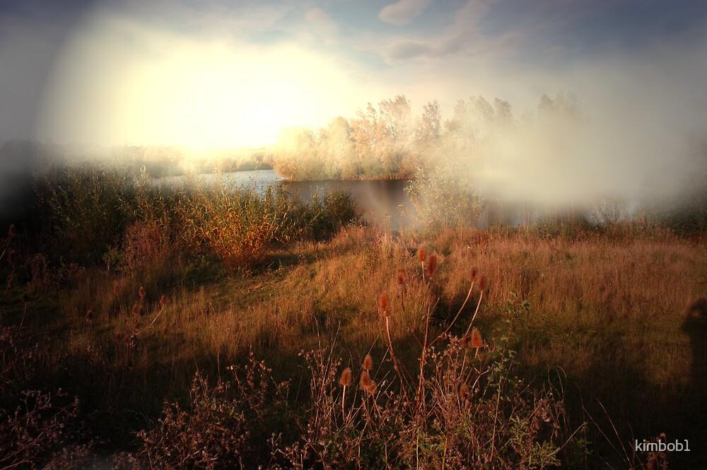 spotlight on the fields by kimbob1