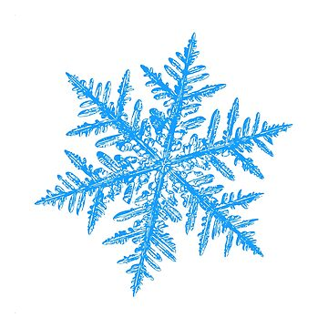 Snowflake vector - Silverware white by chaoticmind75