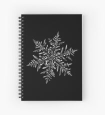 Snowflake vector - Silverware black Spiral Notebook