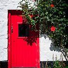 Red Door at Avoka by Yukondick