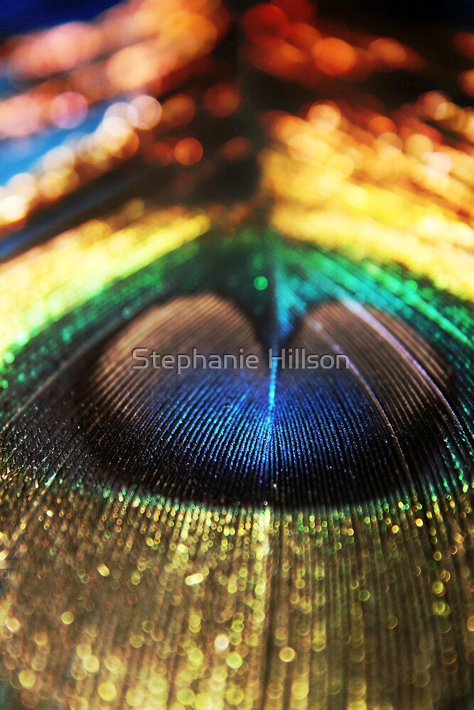 Peacock by Stephanie Hillson