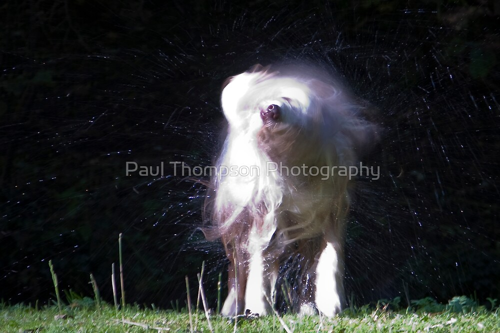 Spray by Paul Thompson Photography