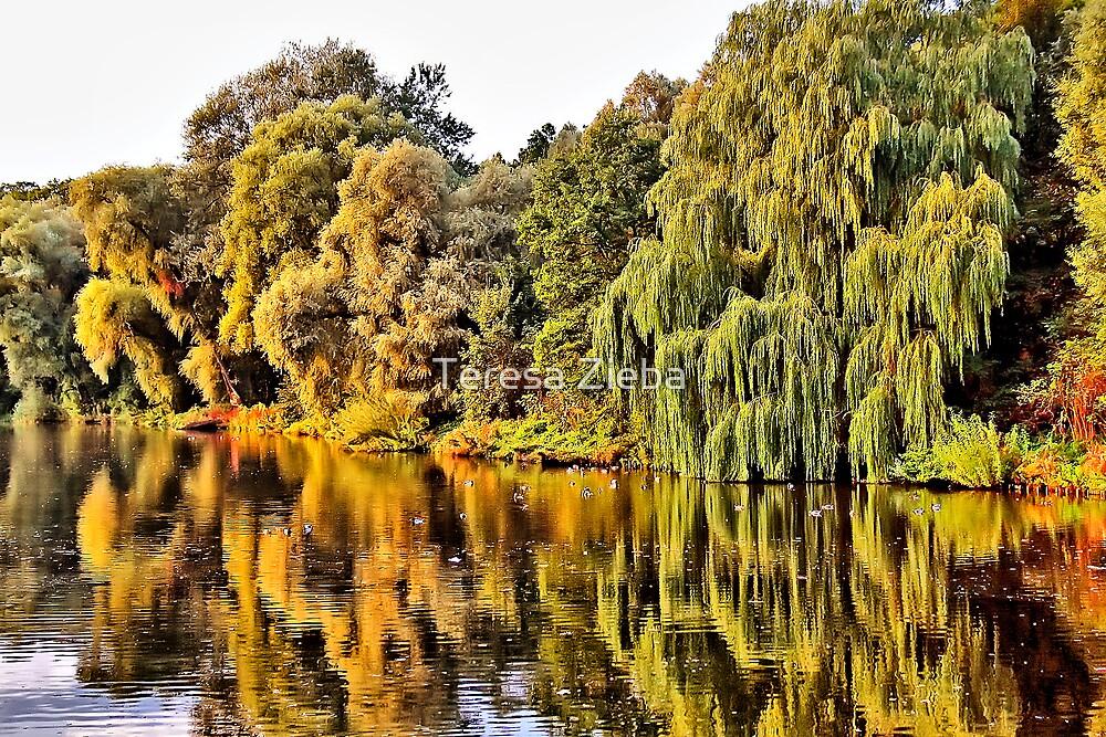 Autumn Splendour by Teresa Zieba