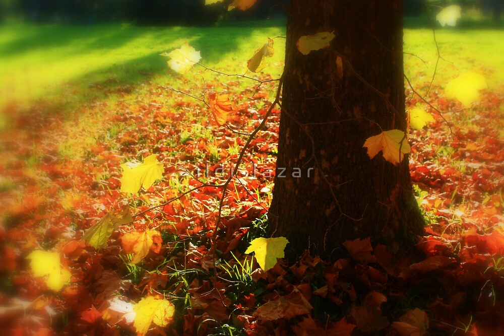 Yellow leaves by i l d i    l a z a r