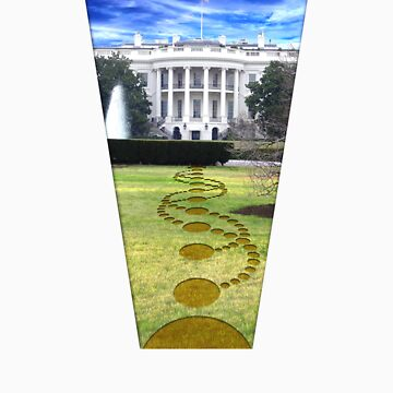 White House crop circle by Waves