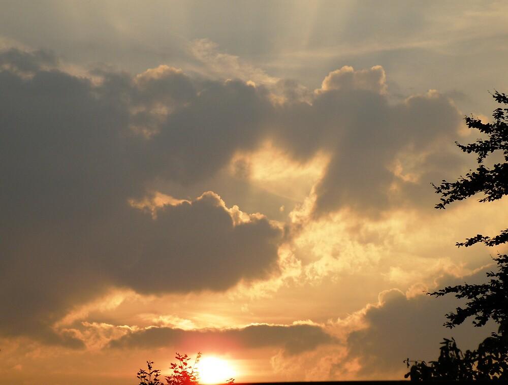 sunset by DonnaDonna