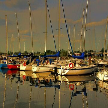 Gimli Harbour!!! by umpa1