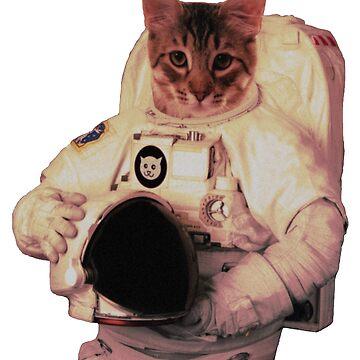 Cat Astronaut by Tikhi