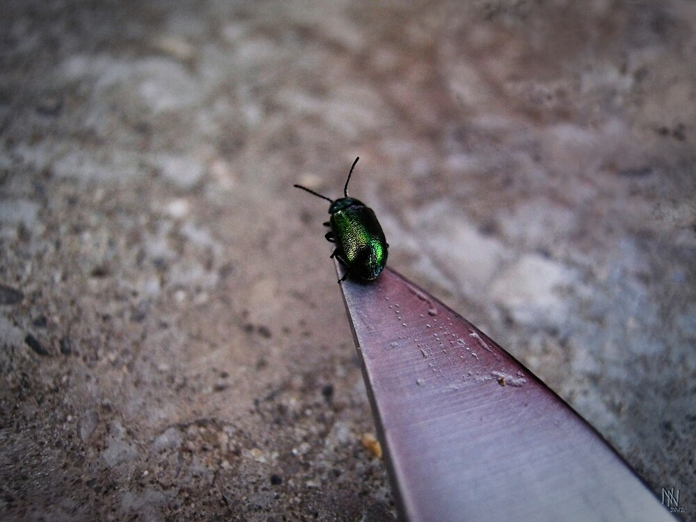 On a knife edge by NafetsNuarb