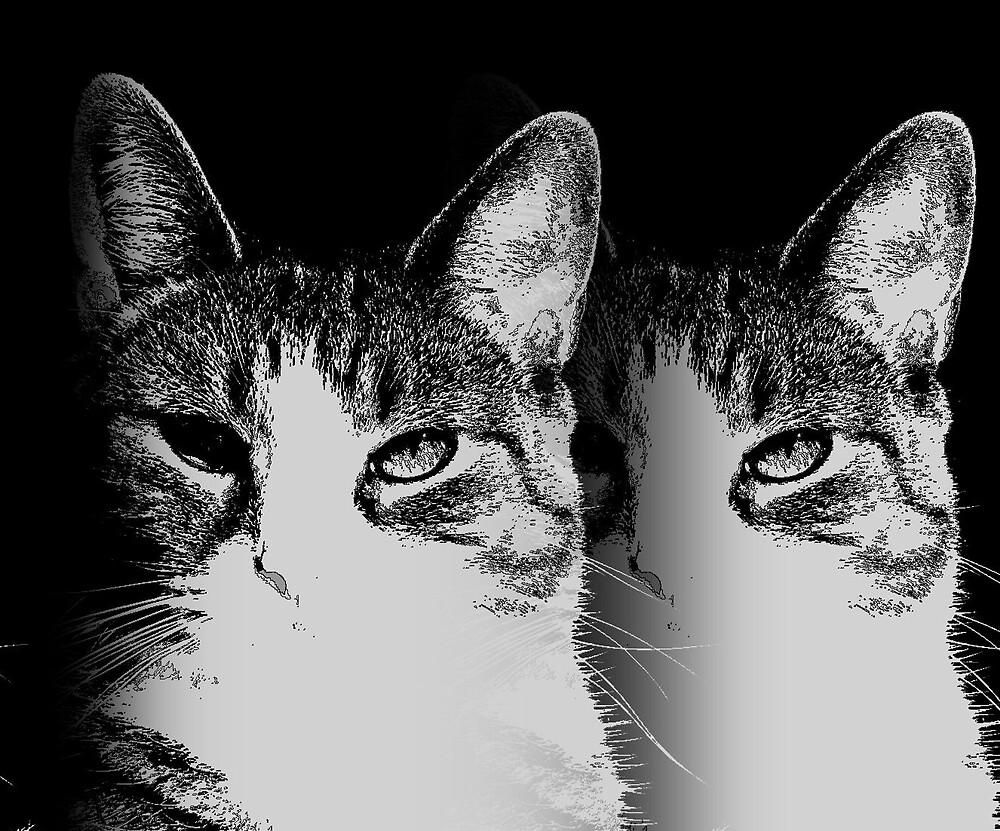 Dupli-cat by Nina Toulmin