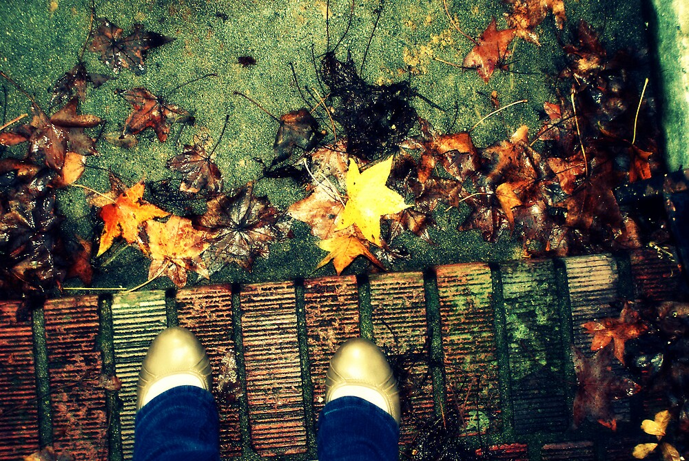 Stepping Over Leaves by Shannon Byous Ruddy