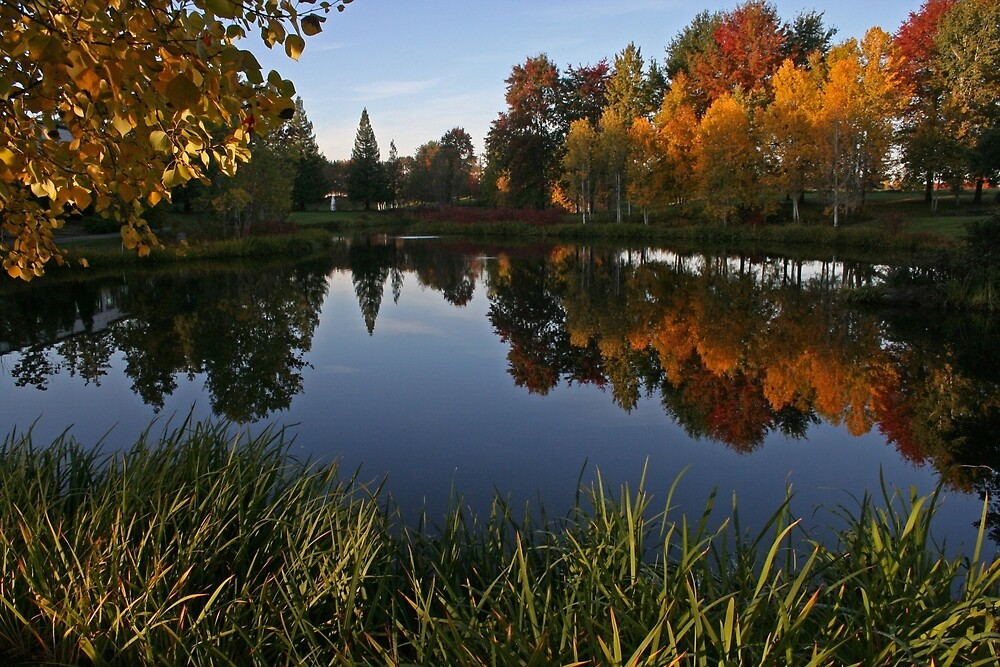 Dawson Creek Park by Randy Richards
