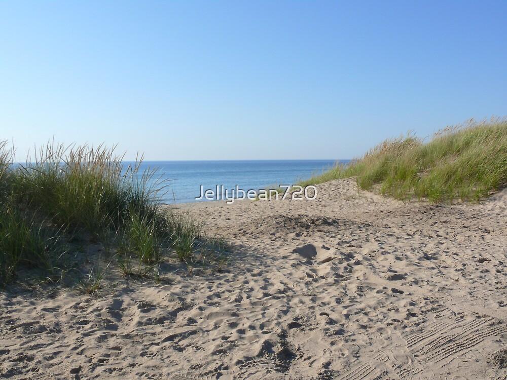 Beaches of Lake Michigan by Jellybean720