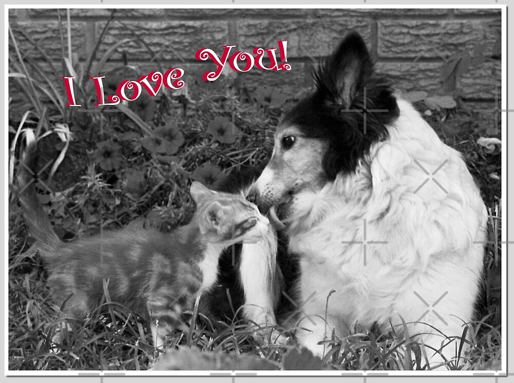 I Love You! by Julie's Camera Creations <><
