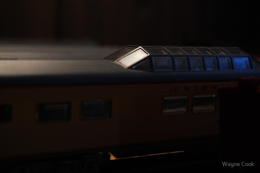 Union Pacific Dome Passenger Car by Wayne Cook
