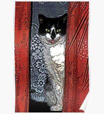 Charlie Barley (the cat) [FluxLimbo] Poster