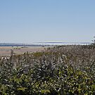 Block Island from Matunuck and the Sparkling Sea by Jack McCabe