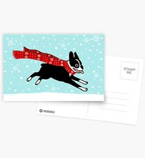 Holiday Boston Terrier Wearing Winter Scarf Postcards