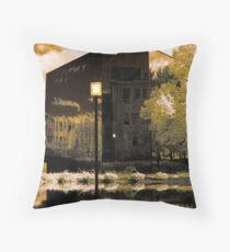 Reflective Surfaces Throw Pillow