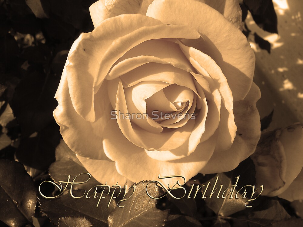 Happy Birthday Rose by Sharon Stevens