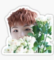 Flower Woozi Sticker