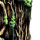 Gnarly Tree Trunk by Nick Ford
