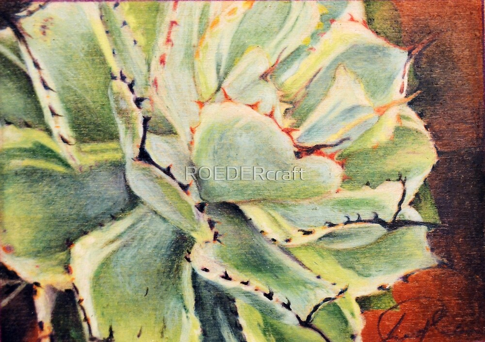 Agave 1 by ROEDERcraft