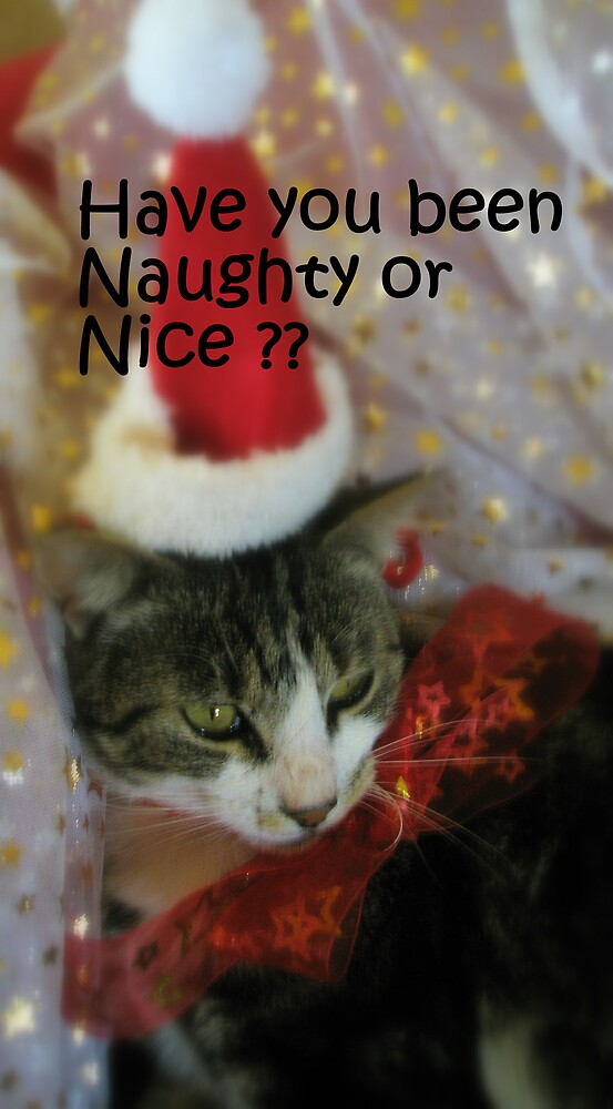 Naughty or nice ? by Melissa Park