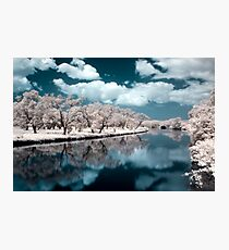 Only Dreaming Photographic Print