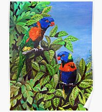 GALLIMAUFRY ~ D1G1TAL-M00DZ ~ Rainbow Lorikeet and Red-collared Lorikeet in Bush by tasmanianartist Poster