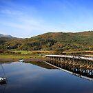 penmaenpool toll bridge by Jon Baxter
