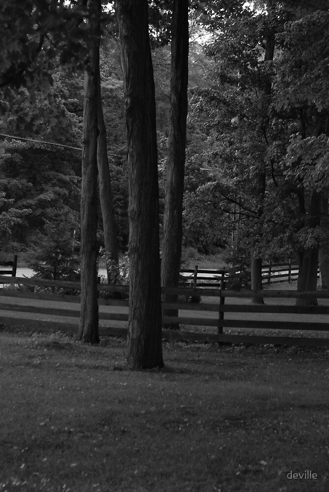 B/W from my porch by deville