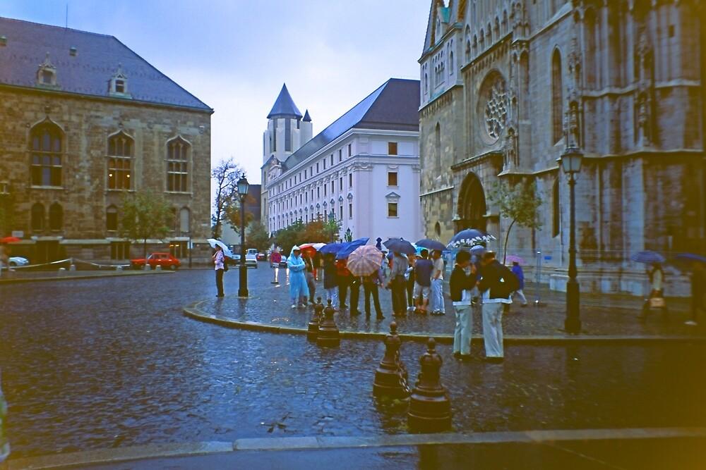 More Rain in Buda, Hungary 2001 by Priscilla Turner