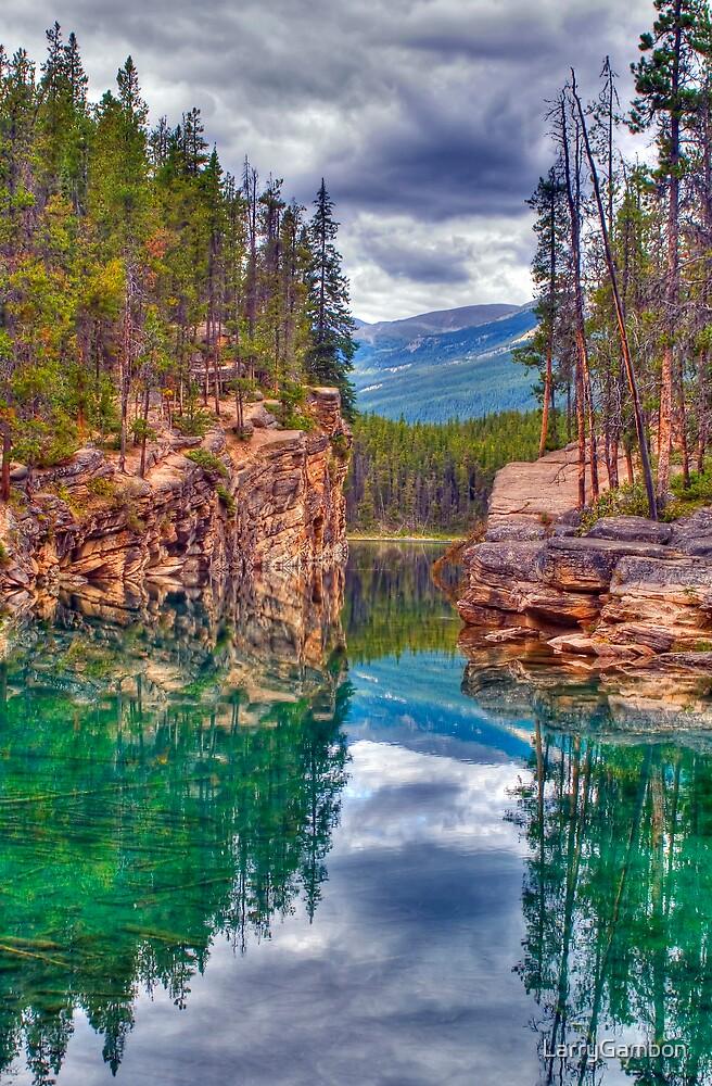 Approach to Horseshoe Lake by LarryGambon