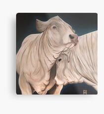 Bulls Metal Print