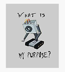 Rick and Morty T-Shirt - What is My Purpose? - Awesome Rick and Morty Gift - Funny Rick and Morty Hoodie Photographic Print