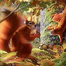 Red Squirels by David Penfound