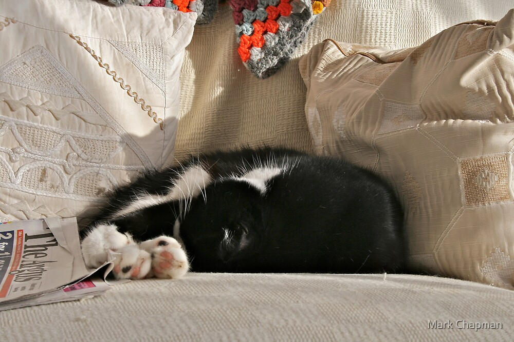 Sunday afternoon nap by Mark Chapman