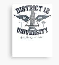 District 12 University Metal Print