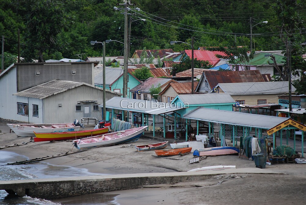 A SMALL FISHING VILLAGE IN ST. LUCIA by Carol Barona