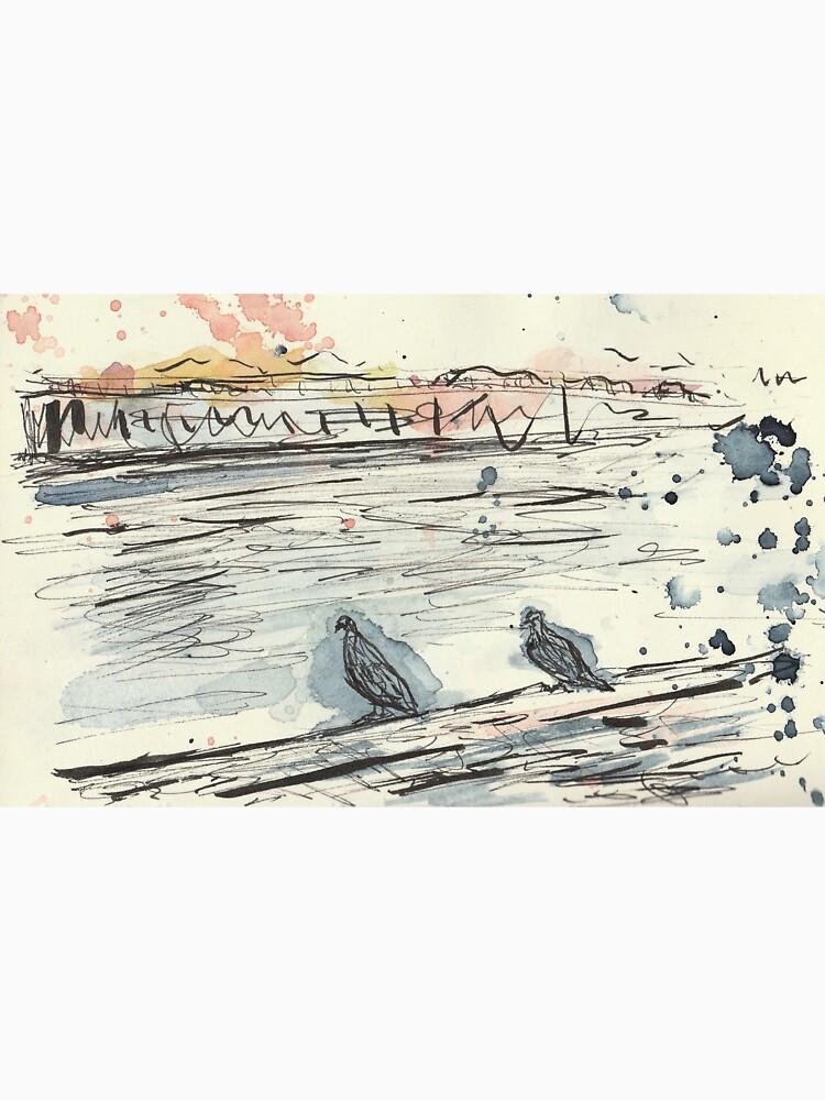 Poetic Brussels: City Pigeons by yanak